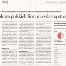 Dziennik - raport o stronach www w firmach